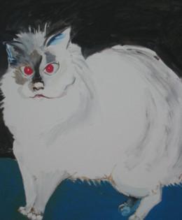 Cat Standing- Lena
